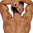 services_posture.png  Spinal & Postural Screenings